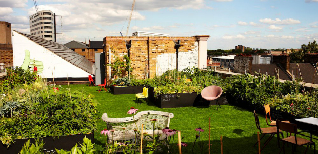Dalston Roof Park Rooftop Bar