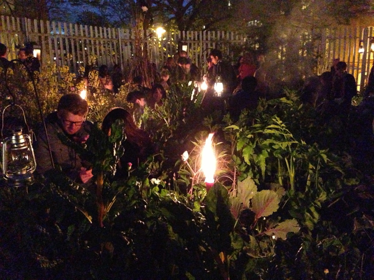 Midnight Apothecary Bonfire Night Special London Date