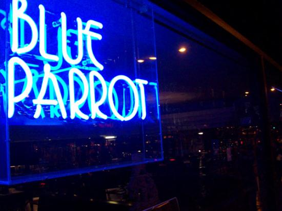 The Blue Parrot Bar & Grille photo