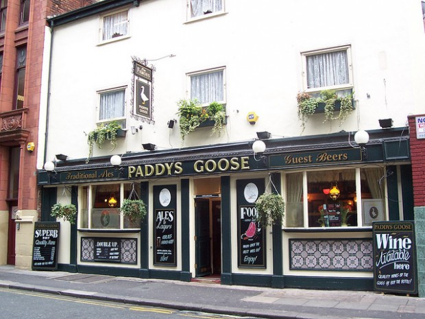Paddy's Goose photo