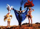 Priscilla, Queen of the Desert - Nomad Cinema