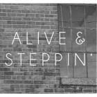 Alive and Steppin' 003 featuring J Kenzo and Compa