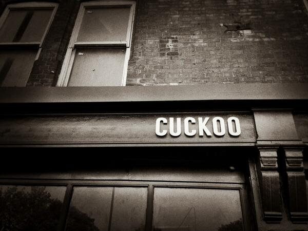 Cuckoo photo