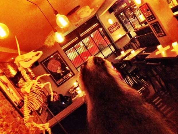 Satan's Whiskers Bethnal Green | London Bar Reviews | DesignMyNight