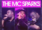 BANK HOLIDAY - DJ EZ Presents The MC Sparks Tribute