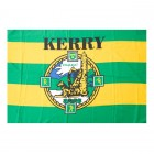 GAA All Ireland Final, Kerry v Donegal Party