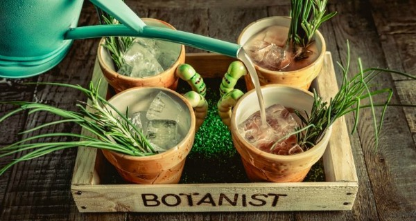The Botanist A new bar comes to blossom on Temple Street