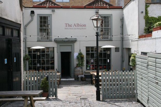 The Albion photo