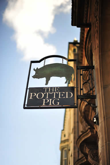 The Potted Pig photo