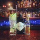 Social Spirits presents Hendrick's Gin