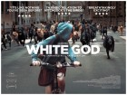 White God - Parent & Baby Screening