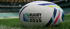 Exmouth Arms RWC 2015 Banquet
