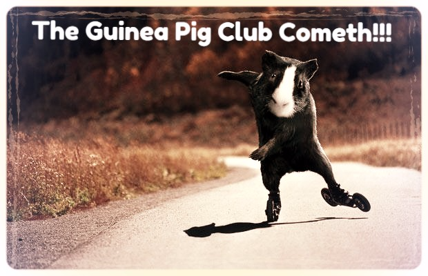 The Guinea Pig Comedy Club