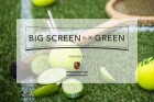 Screen on Green 2016