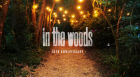IN THE WOODS MINI BUS TICKETS 2016