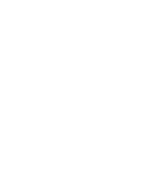 The Wall photo