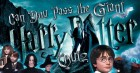 Theme Quiz: Harry Potter & the Quizenor of Ginzkaban