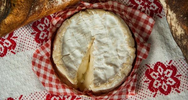 The Big Cheese Festival Brighton 2018
