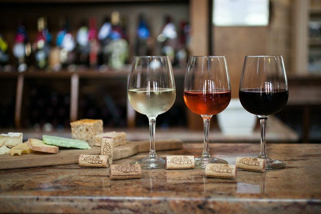 Wine Tasting & Pairing at Nape in Camberwell