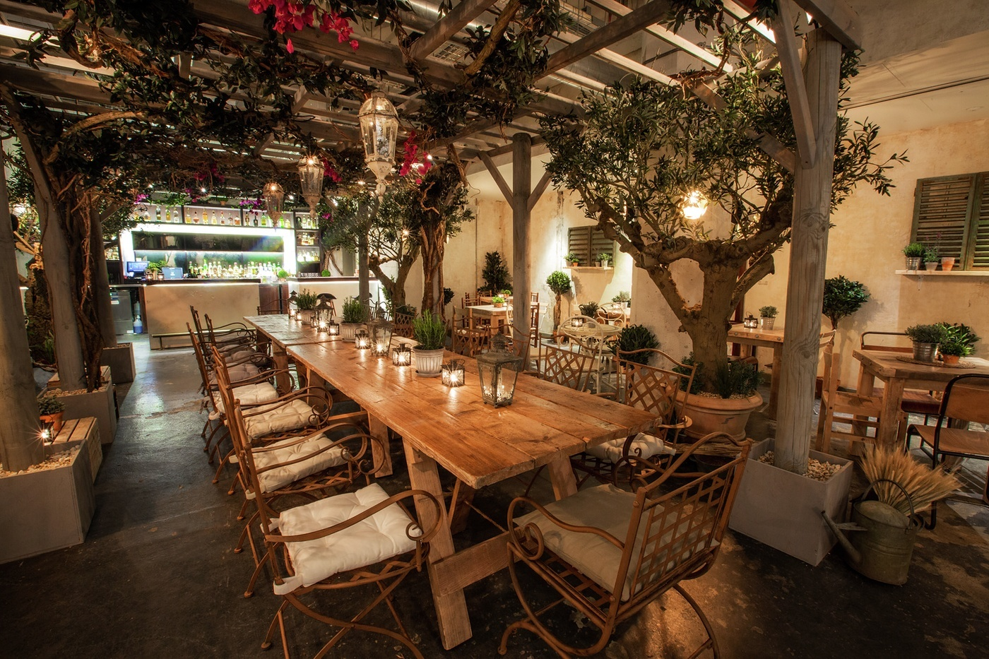 Valentine's Day Dinner in 'The Olive Grove' at Union Street Café
