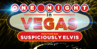NYE PARTY! One Night in Vegas featuring Suspiciously Elvis