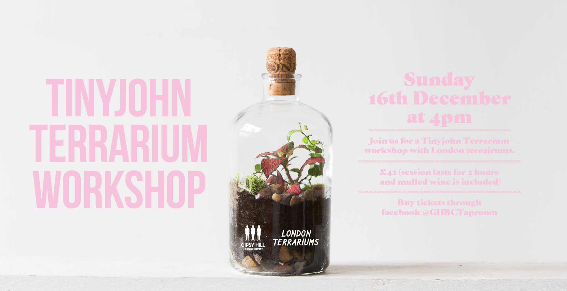 Tinyjohn Terrarium Workshop.