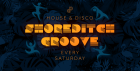 Shoreditch Groove - House & Disco Loft Party