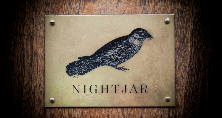 Nightjar pop up in Manchester