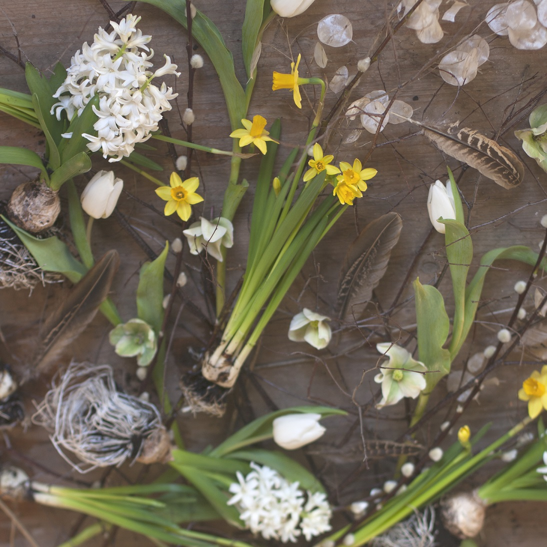 Easter Wreath Floristry with Wild Gorse