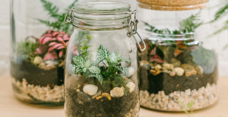 Jar and Fern Terrarium Workshop @ tibits Mayfair