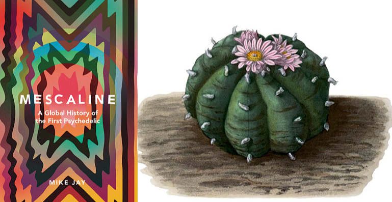 MESCALINE: The First Psychedelic with Mike Jay