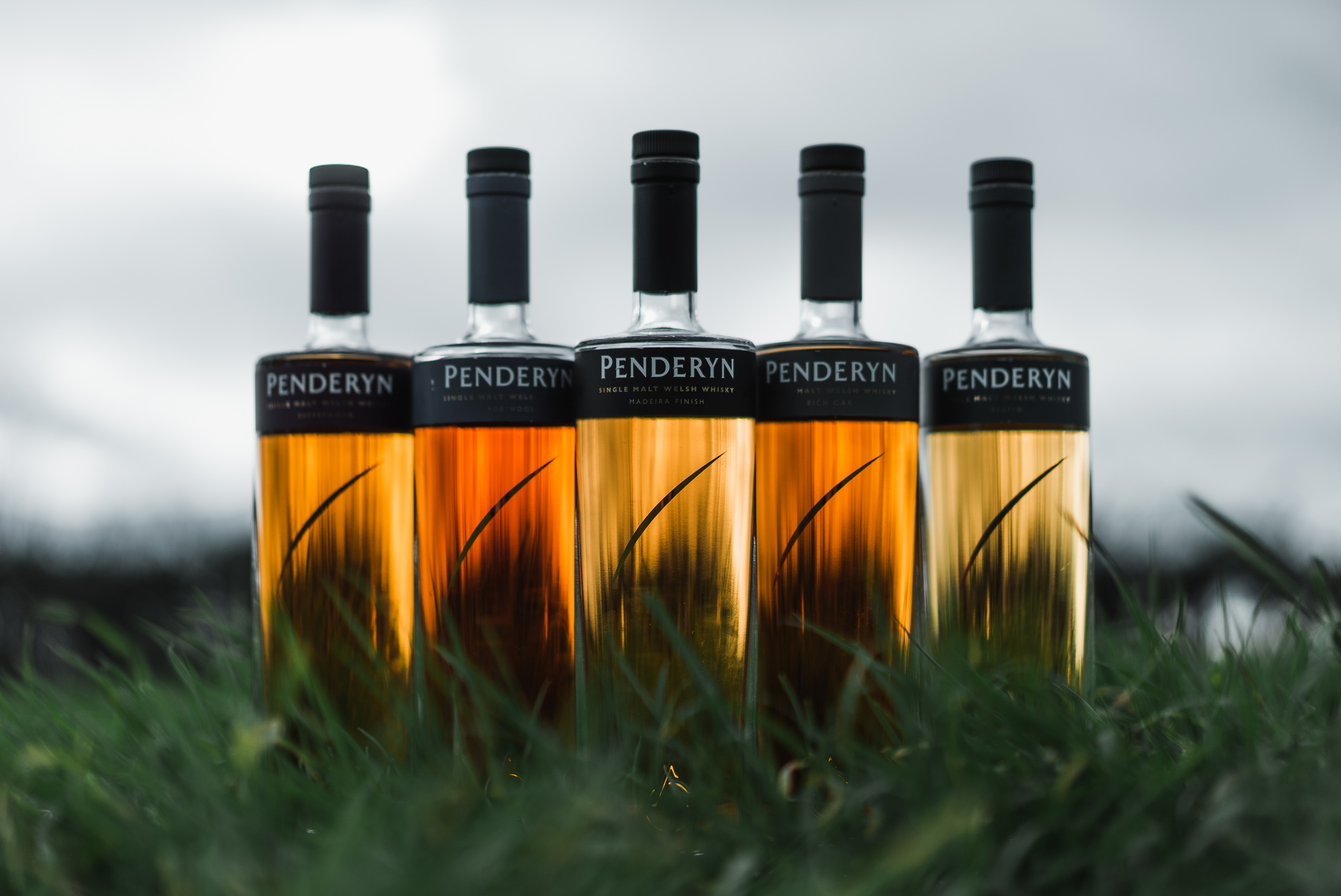 Welsh Whisky Masterclass & Food Pairing