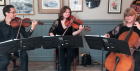 A Classical Evening of Strings and Dining: Rose Gold String Trio
