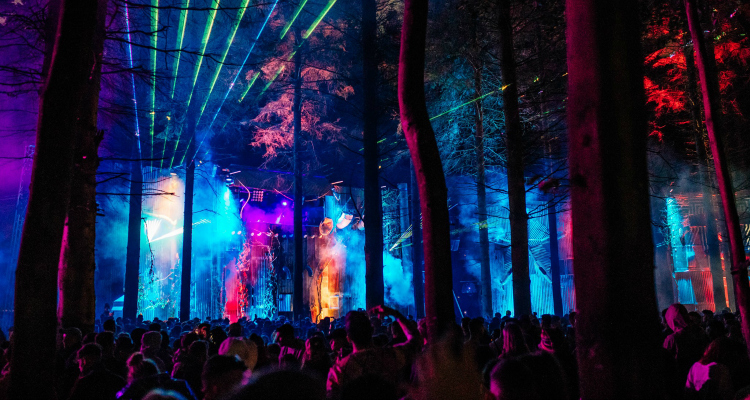 Electric Picnic best festival in the world