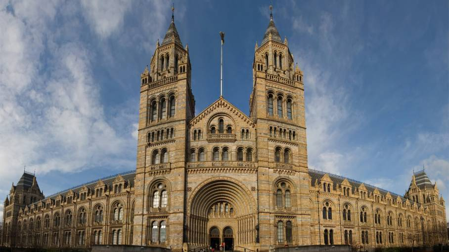 The National History Museum Quiz