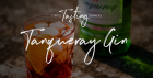 Tipple Tasting Dinner - Tanqueray Gin