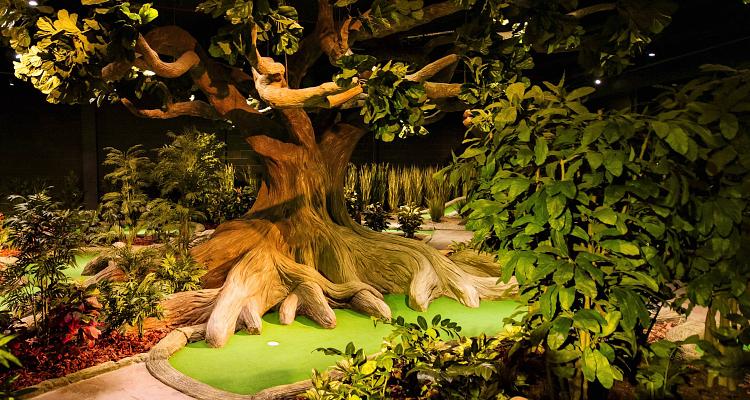 Treetop Adventure Golf Manchester Review