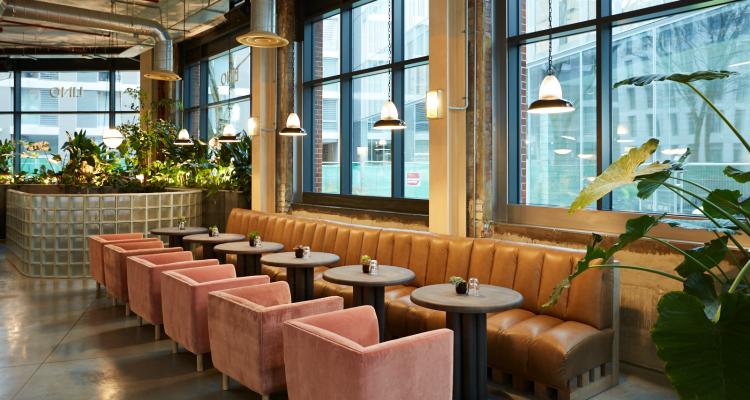 LINO London Restaurant Review