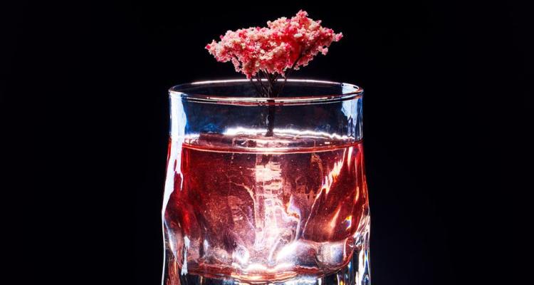 Tattu Cherry Blossom Negroni | Manchester Bar News | DesignMyNight