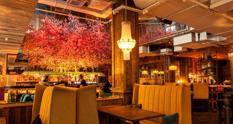 House Belfast Afternoon Tea | DesignMyNight