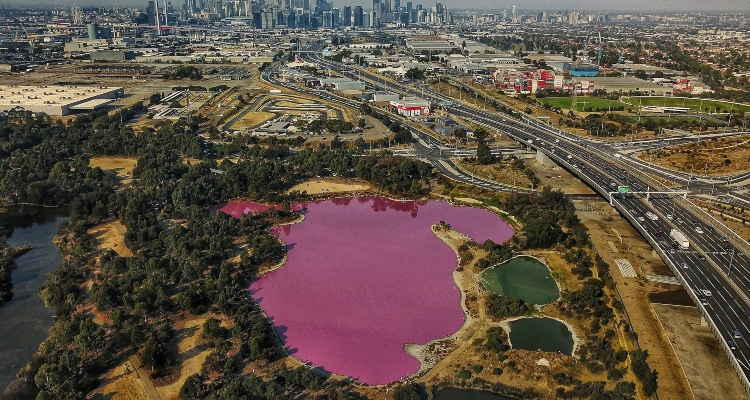 Amazing Things To See in Australia Pink Lake Melbourne