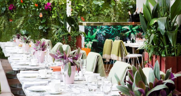 Sanderson London Garden   DesignMyNight
