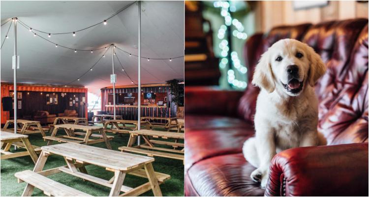 The Bone Yard | Pubs For Dogs In Belfast | DesignMyNight