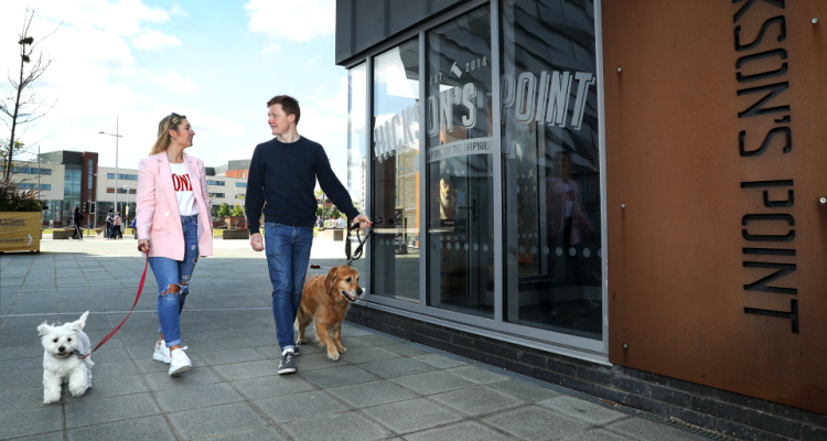 Hickson's Point | Ideas For Dog Owners Belfast | DesignMyNight