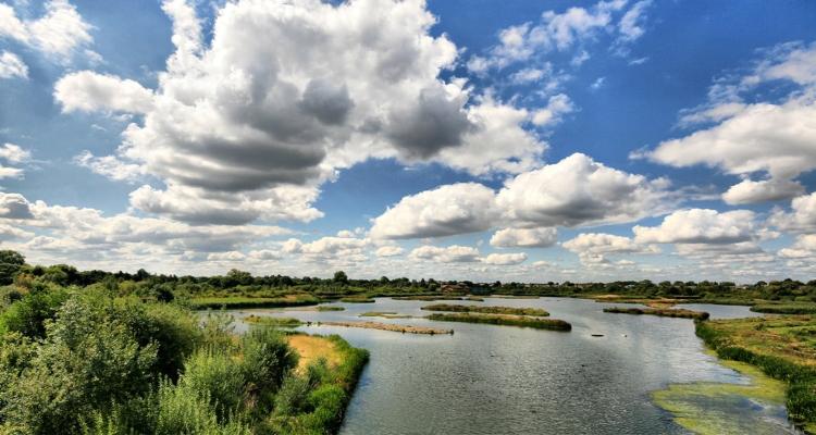 London Wetlands Centre Barnes