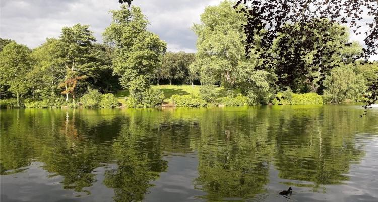 Moseley Park And Pool Best Birmingham Walks