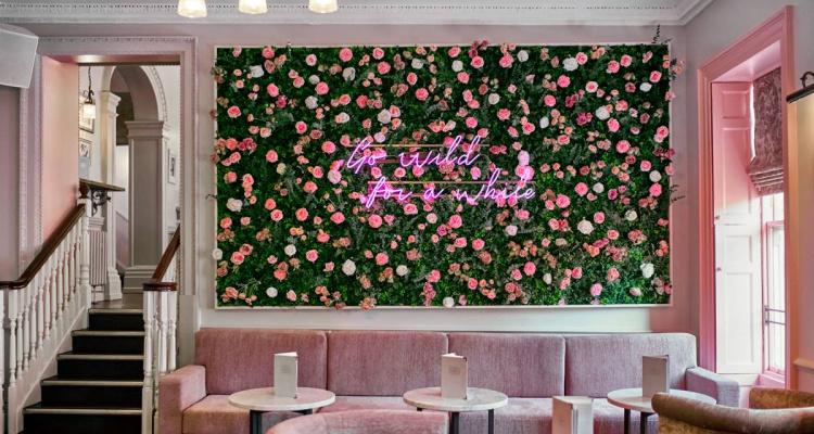 The Florist   UK Pink Restaurants   DesignMyNight
