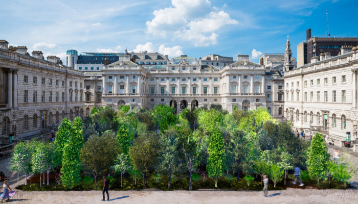 Forest for Change at Somerset House
