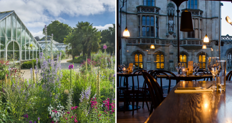 Cambridge: Affordable Getaways in the UK | DesignMyNight