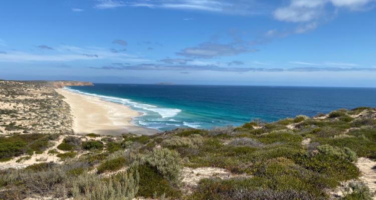 Innes National Park Surfing in Australia   DesignMyNight